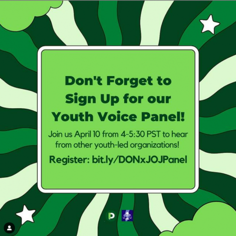 Youth Voice Panel, April 10th